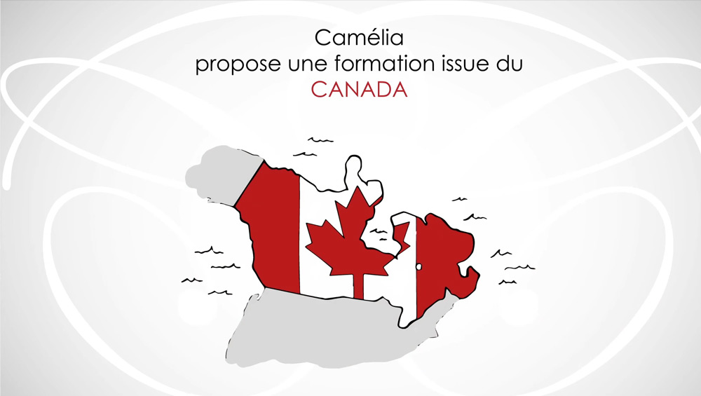 CAMELIA CONSEIL (Motion Design – Animation 2D)